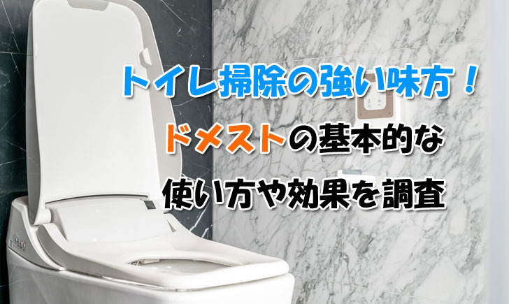トイレ 掃除 ドメスト