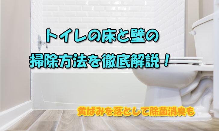 トイレ の 壁 掃除